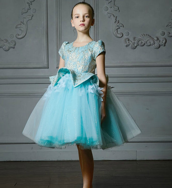Girly Shop's Sky Blue Elegant 3D Flower Applique Round Neckline Cap Sleeve Tea/Knee Length Little & Big Girl Tutu Dress