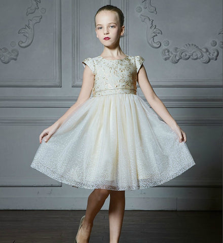 Girly Shop's Ivory Embroidery Flower & Swarovski Crystals Applique Round Neckline Little Girl Party Dress