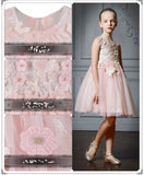 Girly Shop's Light Pink Embroidery Flower Applique Round Neckline Little Girl Party Dress