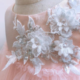 Girly Shop's Light Pink Floral & Silver Sequins Applique Round Neckline Sleeveless Tea Length Tiered Layered Baby Infant Toddler Little Girl Tutu Dress