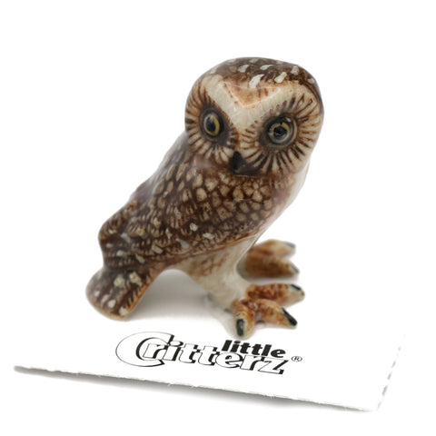 "Owl figurine - Saw-whet Owl - ""Sawyer"" - Porcelain Animal FIgurines - Little Critterz, Little Critterz"