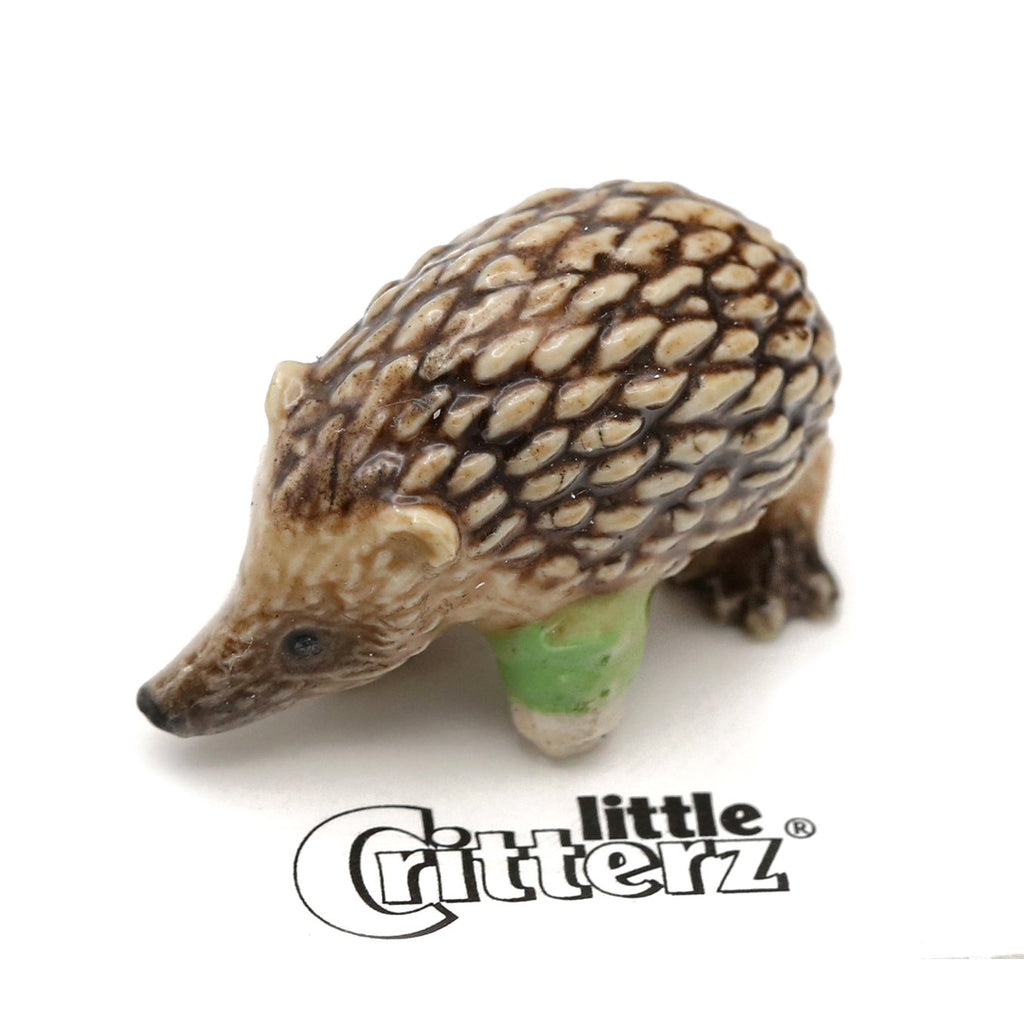 "Hedgehog - Porcelain Rescue Hedgehog  - ""Urchin"" - Porcelain Animal FIgurines - Little Critterz, Little Critterz"