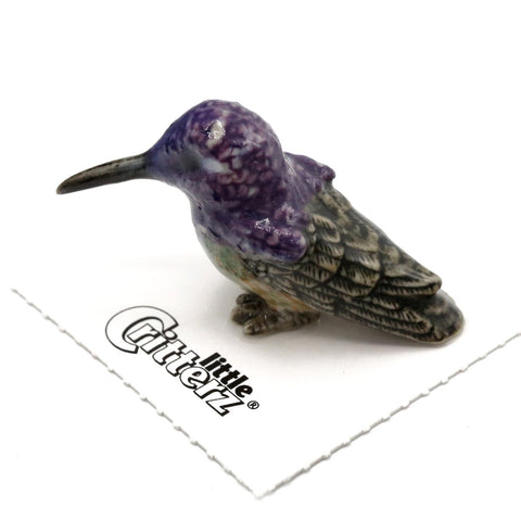 "Bird - Miniature Costa's Hummingbird  ""Cheer"" - miniature porcelain figurine"