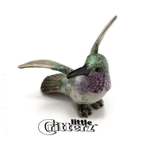 "Lucifer Hummingbird -""Sheartail"""