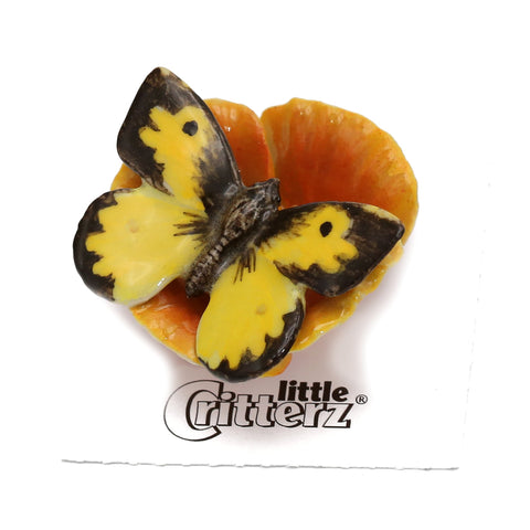 "Dogface Butterfly ""California"" - miniature porcelain figurine"