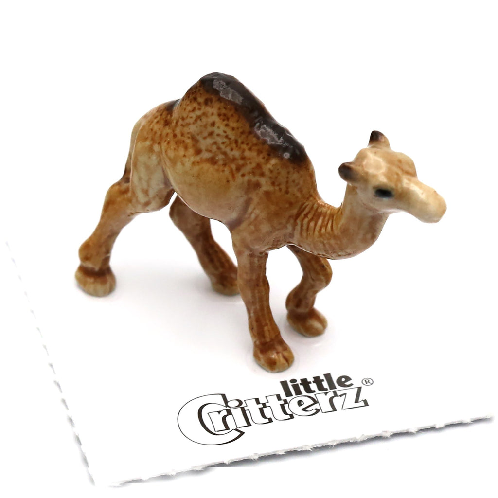 "Dromedary Camel Figurine - ""Patient"" - Porcelain Animal FIgurines - Little Critterz, Little Critterz"