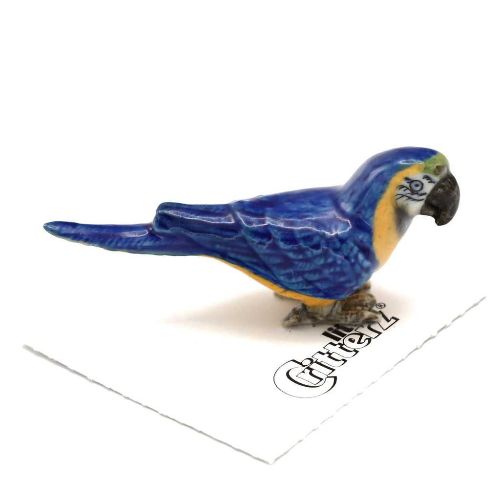 "Parrot - Porcelain Blue-and-Gold Macaw ""Arara"" - Porcelain Animal FIgurines - Little Critterz, Little Critterz"