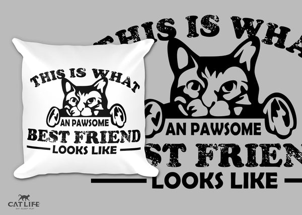 Pawesome Friend- Pillow