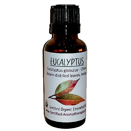 Eucalyptus Organic Essential Oil - Om Air Escapes