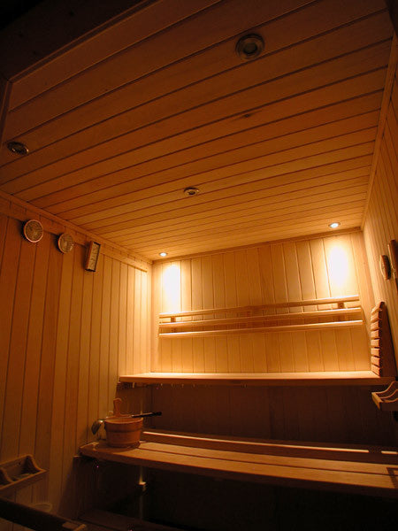 Spectra Recessed Sauna Lighting Kit For Saunalogic Control