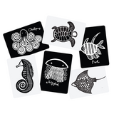 all sea black white art cards for baby