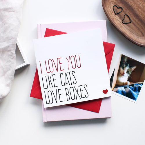 Cats love boxes greeting card