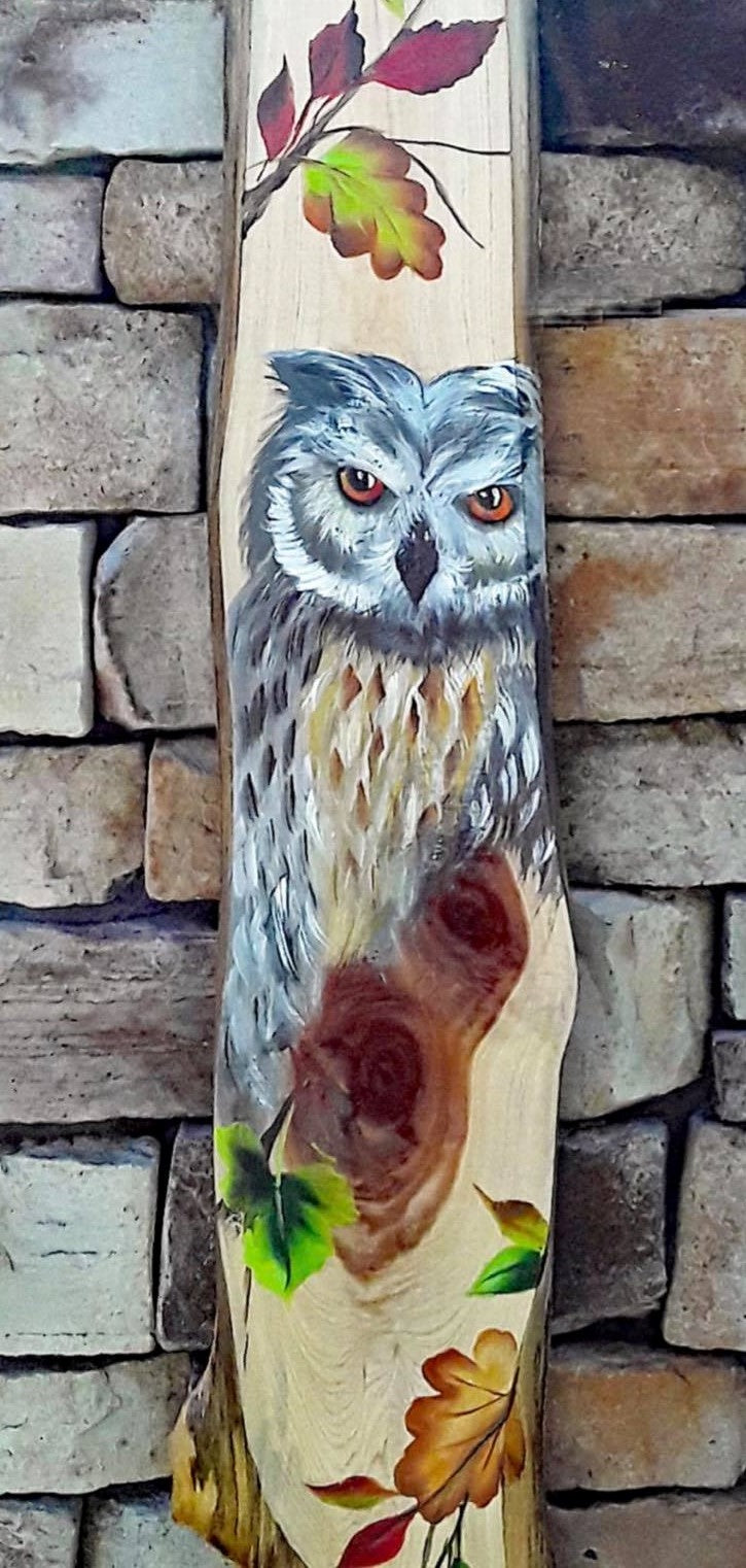 Owl on Plank Downloadable Video Lesson