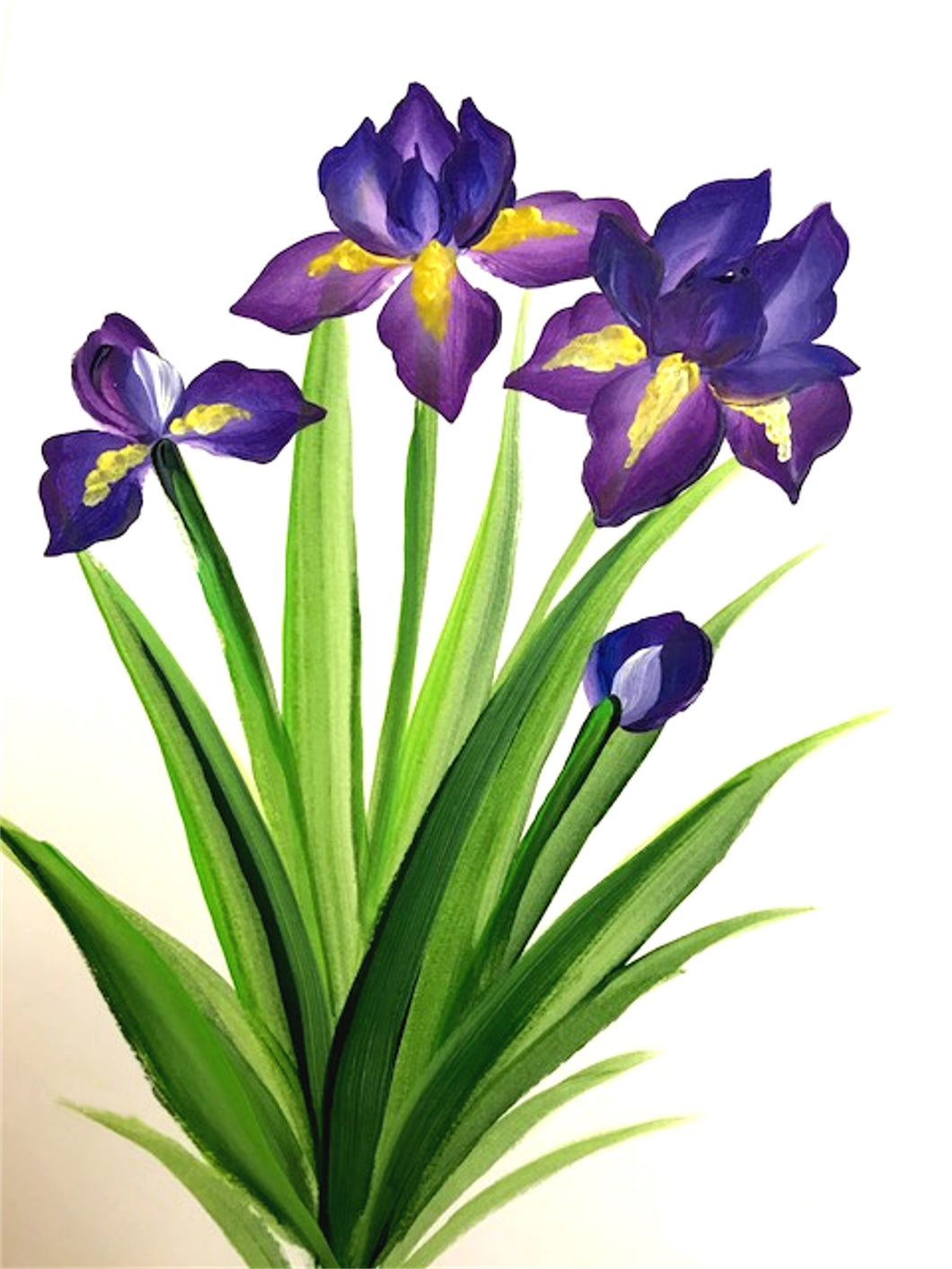 Irises - Course Video