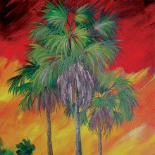 Tropical Palms Project Packet PP-Tropical Palms
