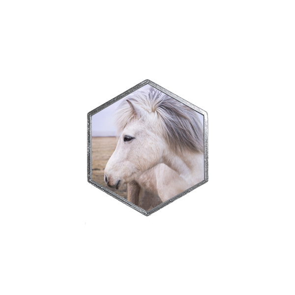 White Horse Profile Hex - Hexlets