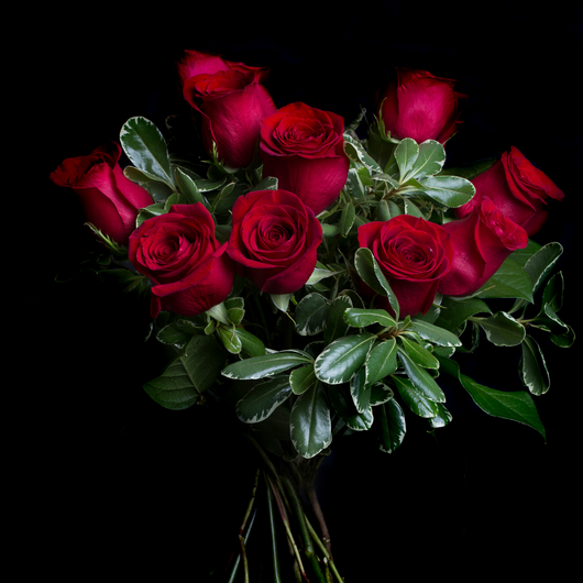 Long Stem Red Roses Flower Bouquet