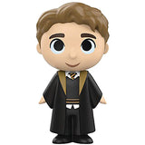 Mystery Minis Harry Potter Series 3 - Cedric Diggory