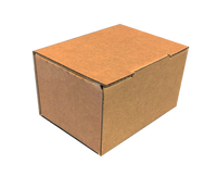 Cardboard Snug Boxes (Sorters) 100-Count FREE SHIPPING IN CONT. U.S.
