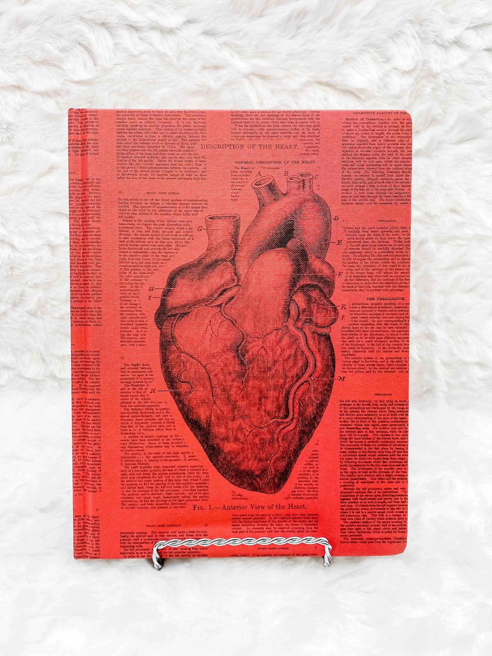 Anatomical Heart Hardcover Lined and Grid Journal