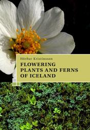 Flowering plants and ferns of Iceland, Book - icelandicstore.is