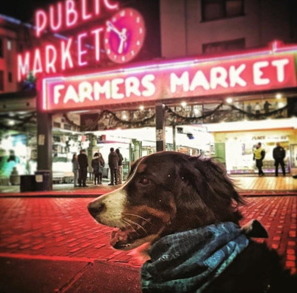 June wearing the Traveling Berner Bandana in Pike Place Market