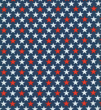 NEW 2019 4th of July Bandana - Pawsitively Patriotic [3 Options!]