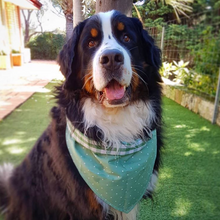 Spring Bandana for Big Dogs