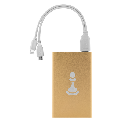 Chess Pawn laser etched Lithium-Ion power bank