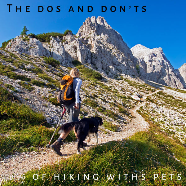 The Dos And Don'ts of Hiking With Your Dog And Other Pets
