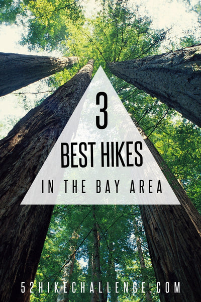 the best hikes in the Bay Area