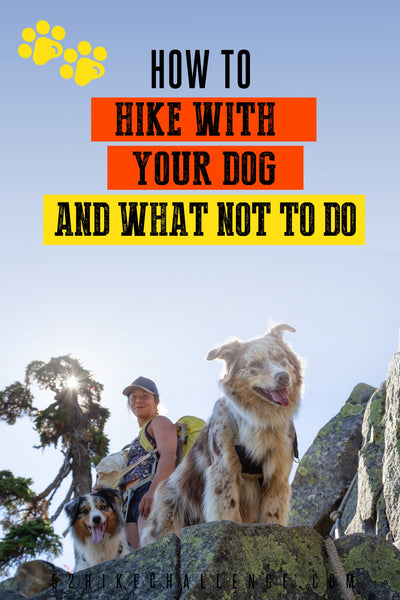 how to hike with your dog