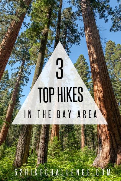 the top hikes in the Bay Area