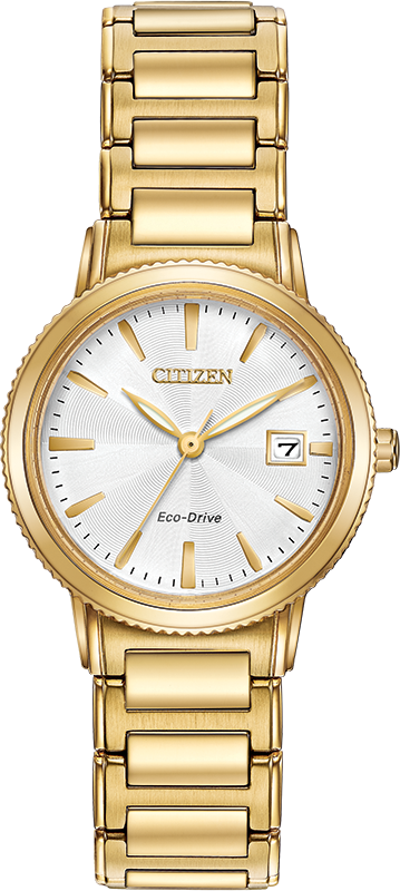 Citizen Eco-Drive - Chandler - Gold Tone