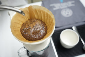 Guatemala El Durazno (Light Roasted - Filter)