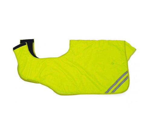 Hi Viz Ride on Exercise Sheet
