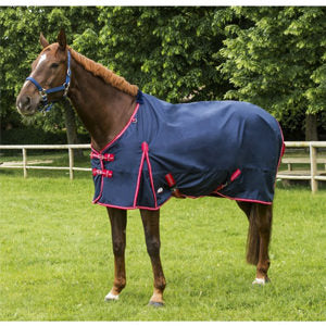 Equitheme TYREX 600D Turnout Rug