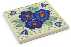 "4"" x 4"" Tile - D81 