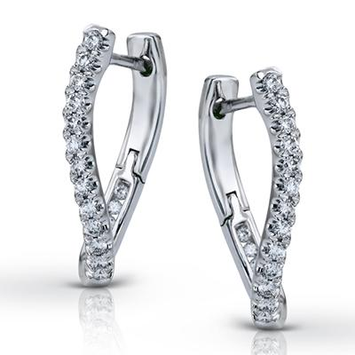 ZEGHANI - ZE101 Ludlow, Hoop Earrings, ZEGHANI - Birmingham Jewelry