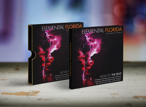 Elemental Florida  Book Sleeve --- Concept 1