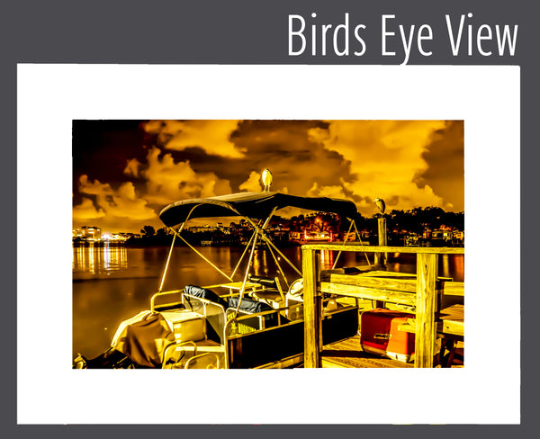 """Birds Eye View"" Matted Print"