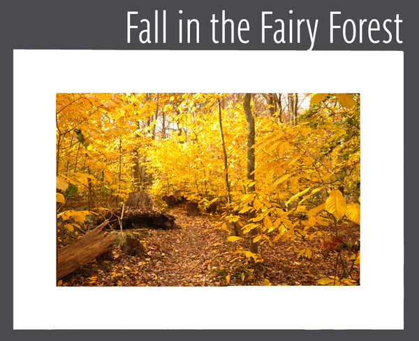 """Fall in the Fairy Forest"" Matted Print"