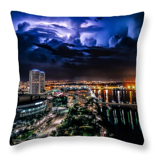 Momentary Appreciation - Throw Pillow