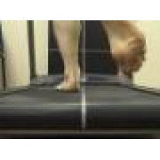 Basic Observational Gait Analysis - Webcast