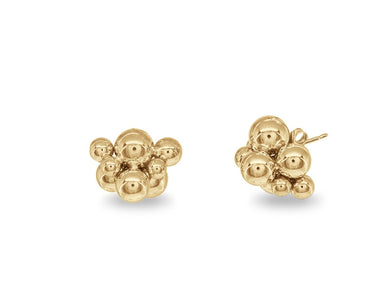 Golden Neutron Studs