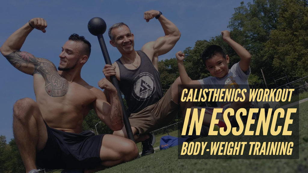 Calisthenics Workout    in essence body-weight training