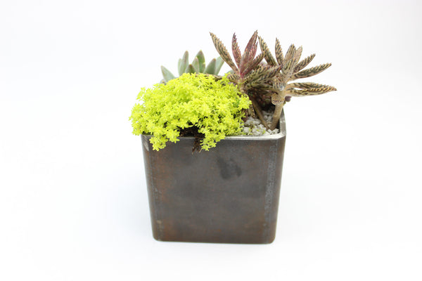 Beautifully Untarnished Metal Pot