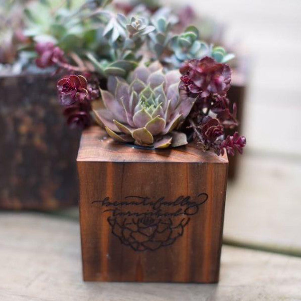 Wooden Succulent Wedding Party Favor