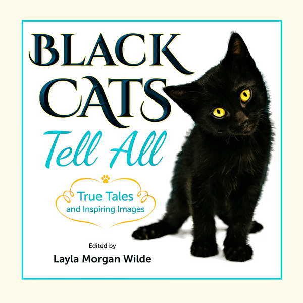 Black Cats Tell All: True Tales And Inspiring Images FREE U.S. Shipping & Bonus