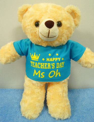 Teddy Bear in blue shirt
